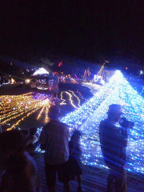 大蔵海岸ライトアップ